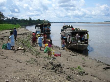 Selva Amazonica 053